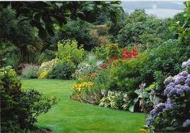 Avoid Gardeners Back Pain